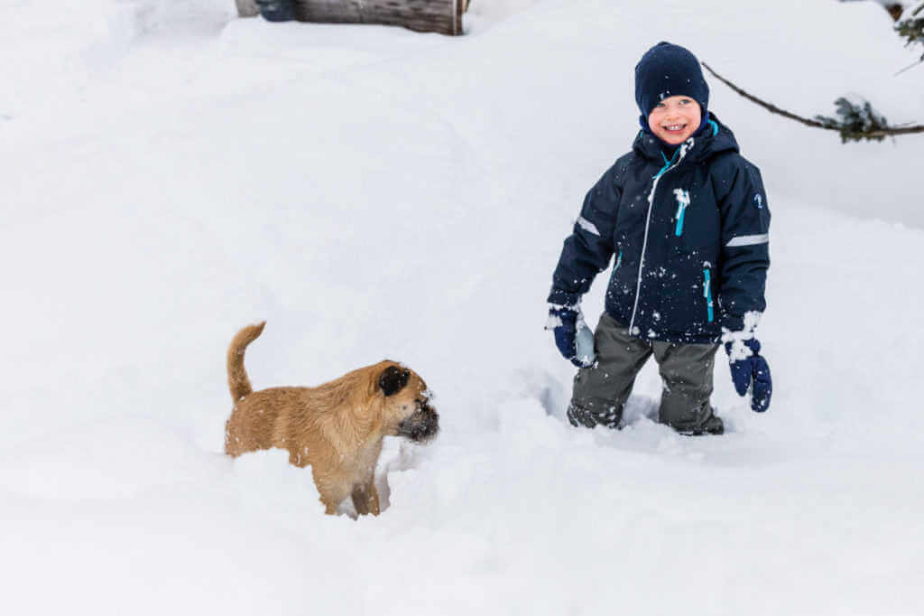 Child and dog playing in the snow at Le Chardon Val d'Isère